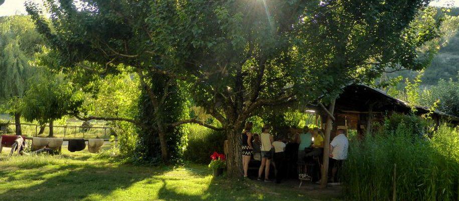 vacances d'été à la ferme équestre