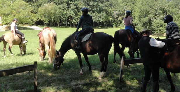 équitation, horse riding